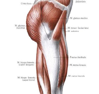 Гирудотерапия при лечении артритов