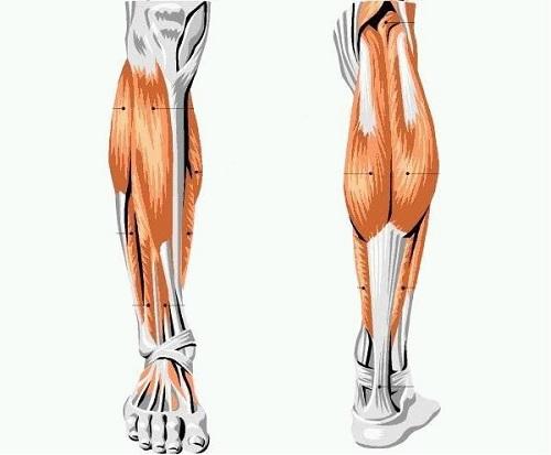 Боль в бицепсе левой руки лечение