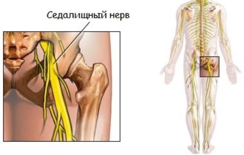 Лечение нервов в домашних условиях отзывы 497